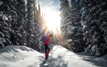 Snowshoeing in State Forest State Park, Colorado